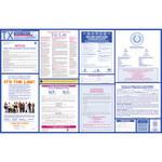 Brady Papel Rectángulo Cartel de ley laboral - 39.5 pulg. Ancho x 25.5 pulg. Altura - Laminado - 106386