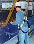 DBI-SALA Sinco Azul 11 lb Red vertical para escombros - 648250-16130