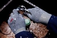 3M Agarre de comodidad CGL-W Gris Grande Espuma de nitrilo Poliéster/lycra Guante para condiciones frías - 054007-99151