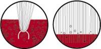 3M Brushlon Nailon Rodillo de cepillo de cerdas - 1 pulg. ancho x 110 pulg. longitud - 19918